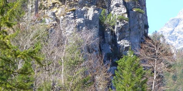 von unten Blick zur Ruine hinauf