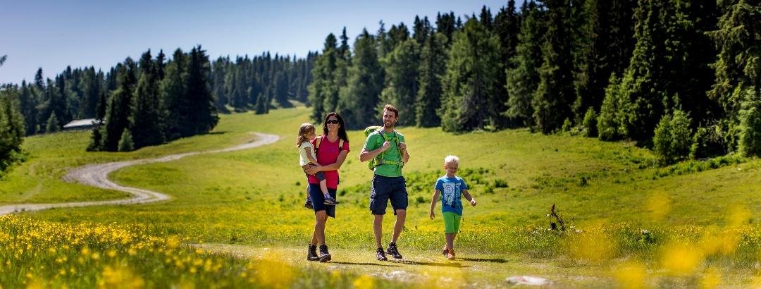 与孩子一起在Frauenalpe(穆劳/Murau)里徒步