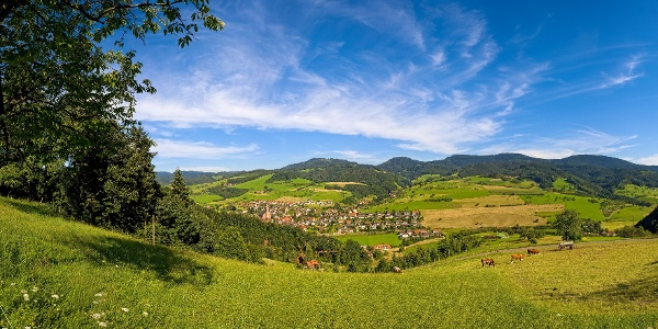 Blick auf Oberharmersbach