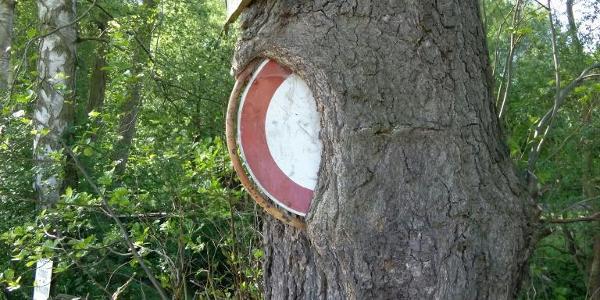 Durchfahrt zum Teil verboten