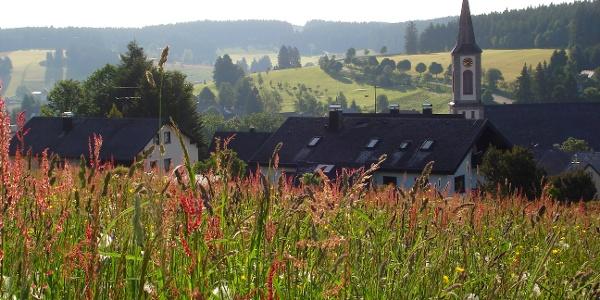 Blick vom Zinswald auf Schönwald