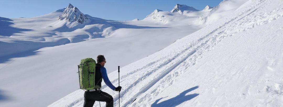 Anstieg zum Schalfkogel: Blick über den Gurgler Ferner auf die Hohe Wilde