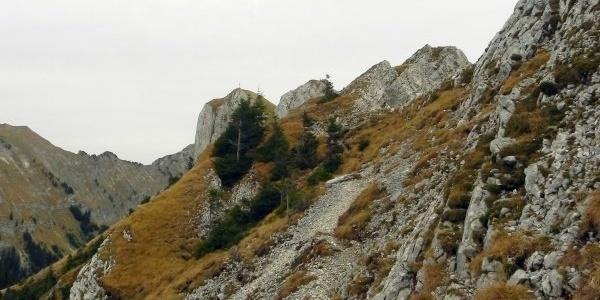Der Steig zum Gipfel