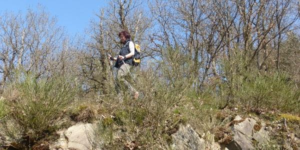 Wanderer auf der Felsrippe