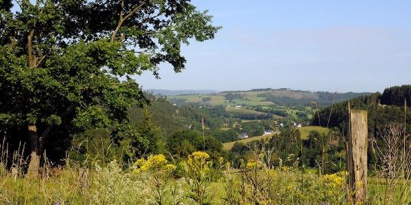 Blick über Winkhausen