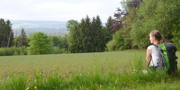 Waldpfad-03