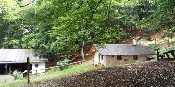 SAT 506 Monte-Bait dei Manzi-Aiseli. Bait dei Manzi e Bait dei Boscheri