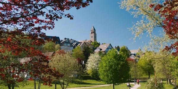 Der Kurpark in Schmallenberg