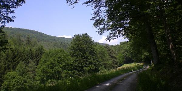 Fechenbachtal