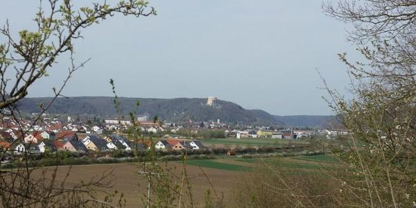 Blick über Kelheim