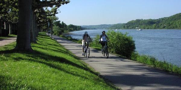 Rheinradweg Bad Breisig