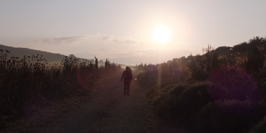 Dem Sonnenaufgang entgegen...