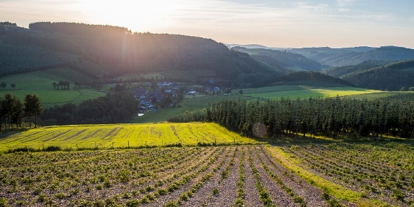Blick über Oberrarbach