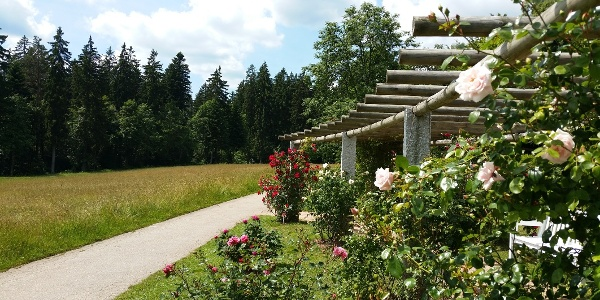 Pergola am Rosenweg auf dem Kienberg