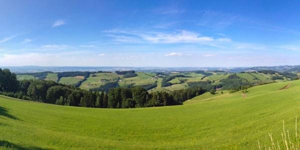Blick Richtung Norden mit Jauerling und der Donau (Wachau)