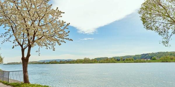 Donaulände bei Marbach an der Donau