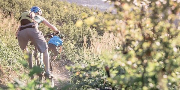 TrailGround Brilon