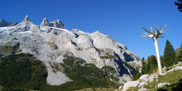 Alpgeschichte