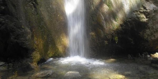 Sebastian Wasserfall