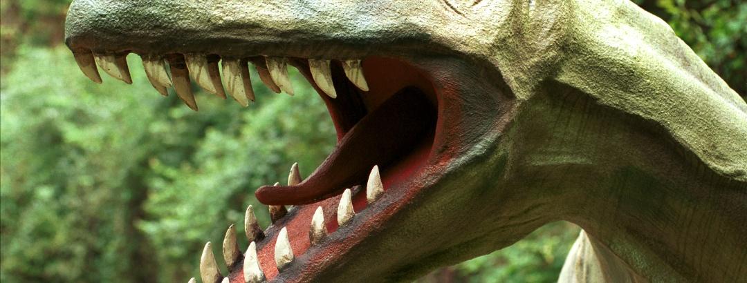 Mahlzeit: Irgendwie beruhigend zu wissen, dass diese gefräßigen Gesellen vor 65 Millionen Jahren ausgestorben sind.