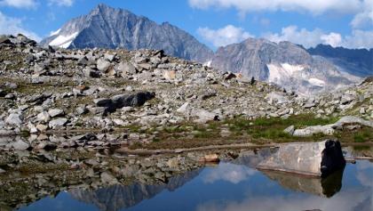 Gletscherlacke ~2495m mit Löffler