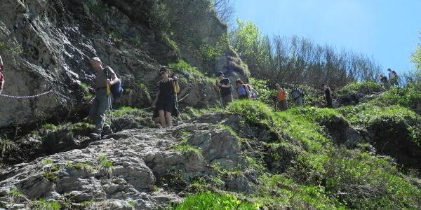 Abstieg von der Landberger zur Traualpe