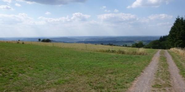 Panorama bei Pellingen
