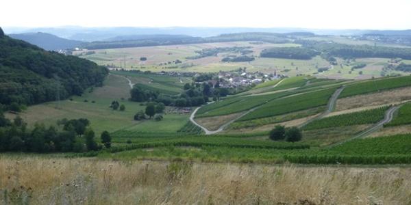 Blick auf Krettnach und das Konzer Tälchen