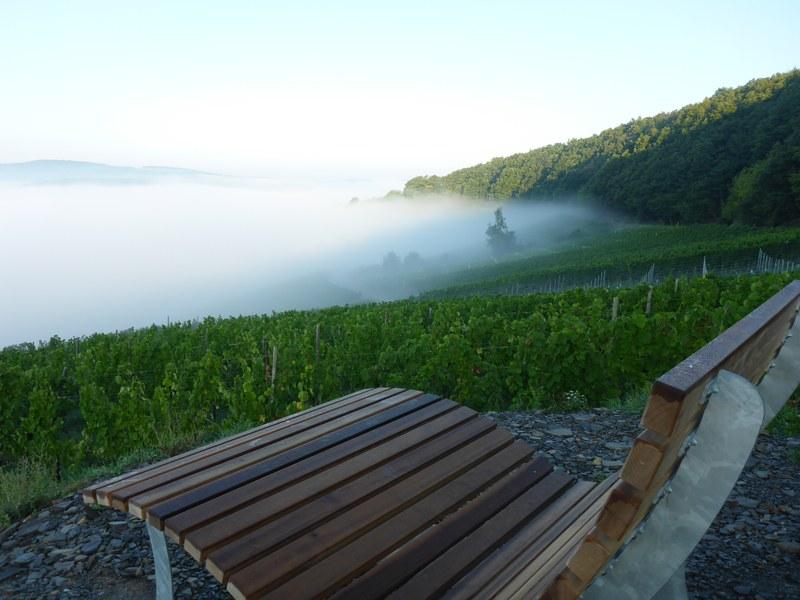 Moselsteig-Wünschelrouten 2021: Sagenhafte Schlemmertour
