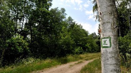 Lutherweg zwischen Löbnitz und Bad Düben