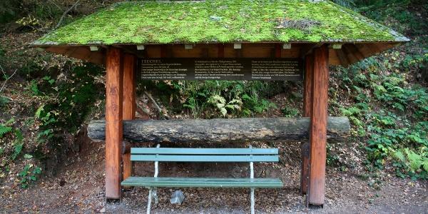 Die Teuchel - eine historische Holzwasserleitung
