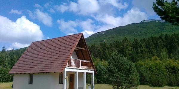 Holiday house at Vran mountain