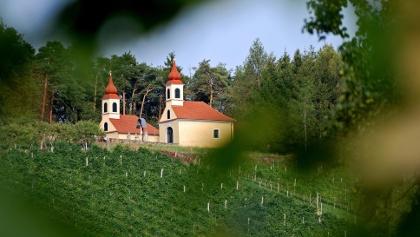 Weinberg mit Blick auf das Hl.Grab