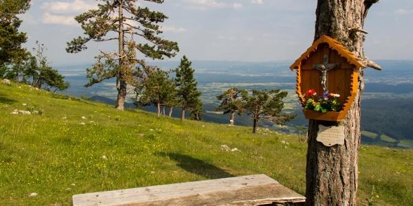 Von der Großen Kanzel genießt man einen herrlicher Ausblick ins Wiener Becken