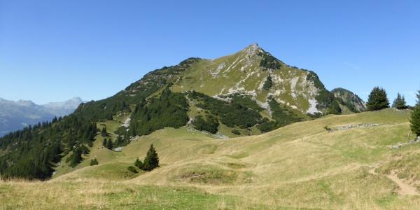 Obere Wies mit Blick auf den Alpilakopf
