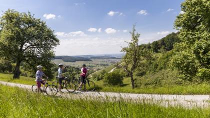 Ausblick gen Breitenauer See