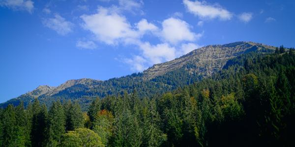 Blick auf Hochgrat & Rindalphorn