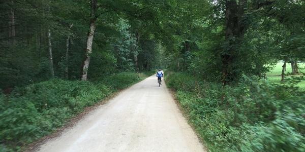 Radweg zu Schloss GRafeneck