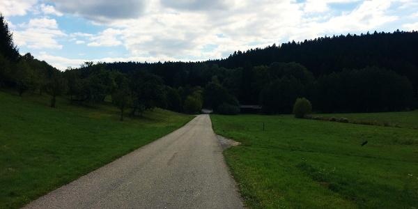 Am Lippbach Bannwiesen