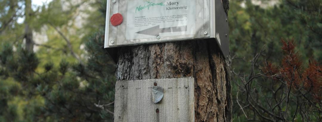 versicherter Klettersteig; Walter Mory