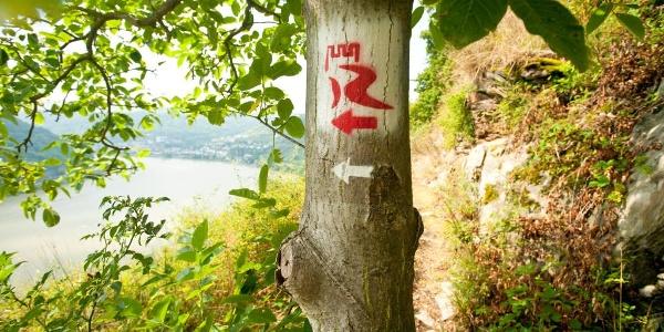 Markierung RheinBurgenWeg