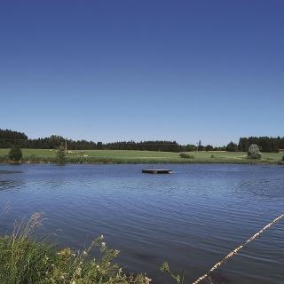 See bei Rückholz