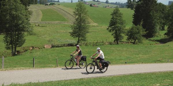 Auf der Moorwald-Runde bei Görisried-Beilstein