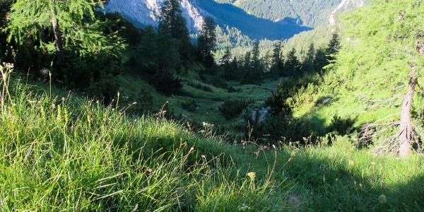 Scendendo dal passo Oberenghe