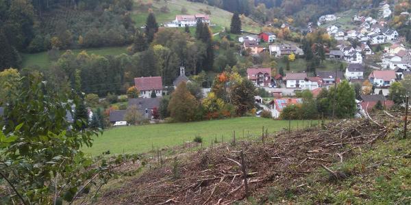 Aussicht auf Neulautern-Buchenbach