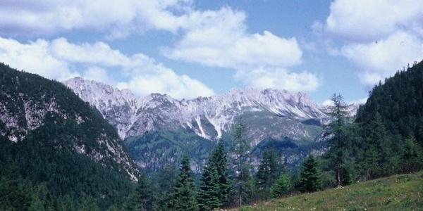 Sui prati del passo Siera. Sullo sfondo il monte Ferro e la cresta del Righile