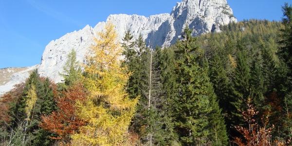 Panorama vom Fölzboden aus