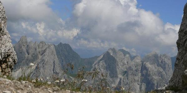 Scorcio sulla verde insellatura del passo Cacciatori tra la Creta omonima (a destra) e il monte Chiadenis (a sinistra)