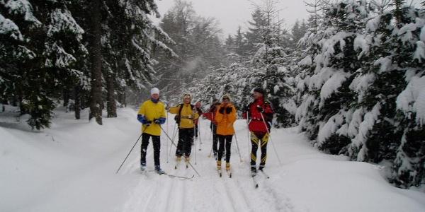 Skifahrer auf Hasselfelder Loipe