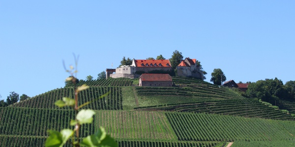 Herrliche Ausblicke genießt man auf de nzahlreichen Burgen und Schlösser entlang der Ferienstraße